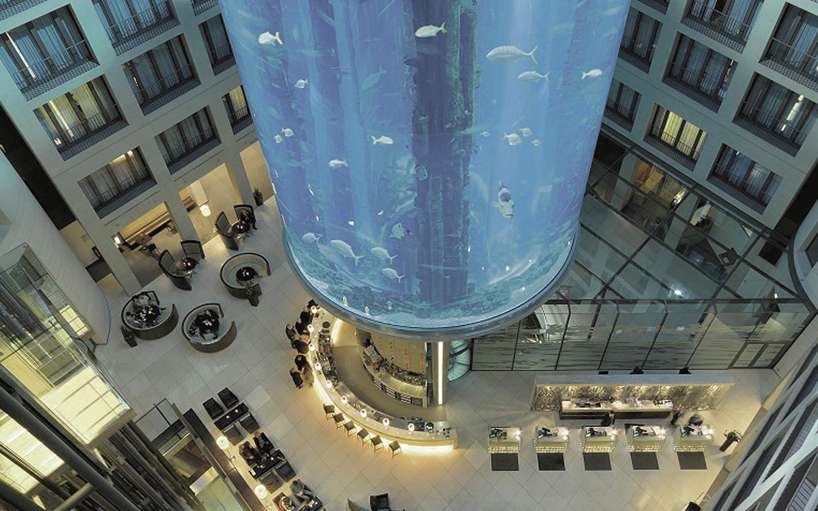 hotel designer for radisson blue public areas showing reception with sealife aquarium.